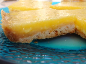 Lemon Square Close Up Use